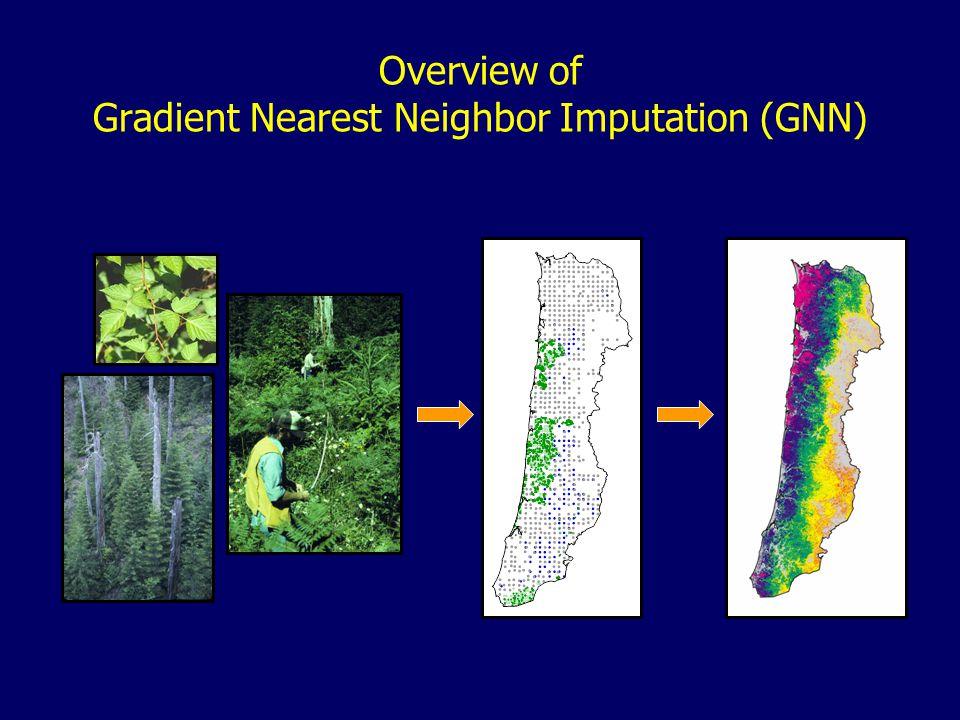Overview of Gradient Nearest Neighbor Imputation (GNN)