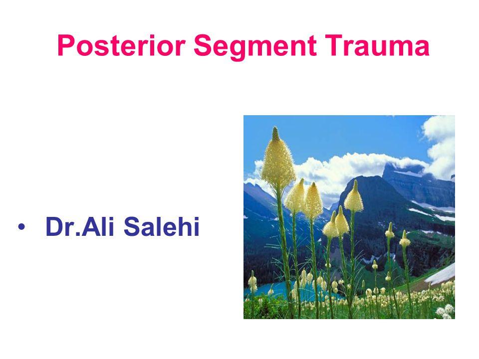 Posterior Segment Trauma Dr.Ali Salehi