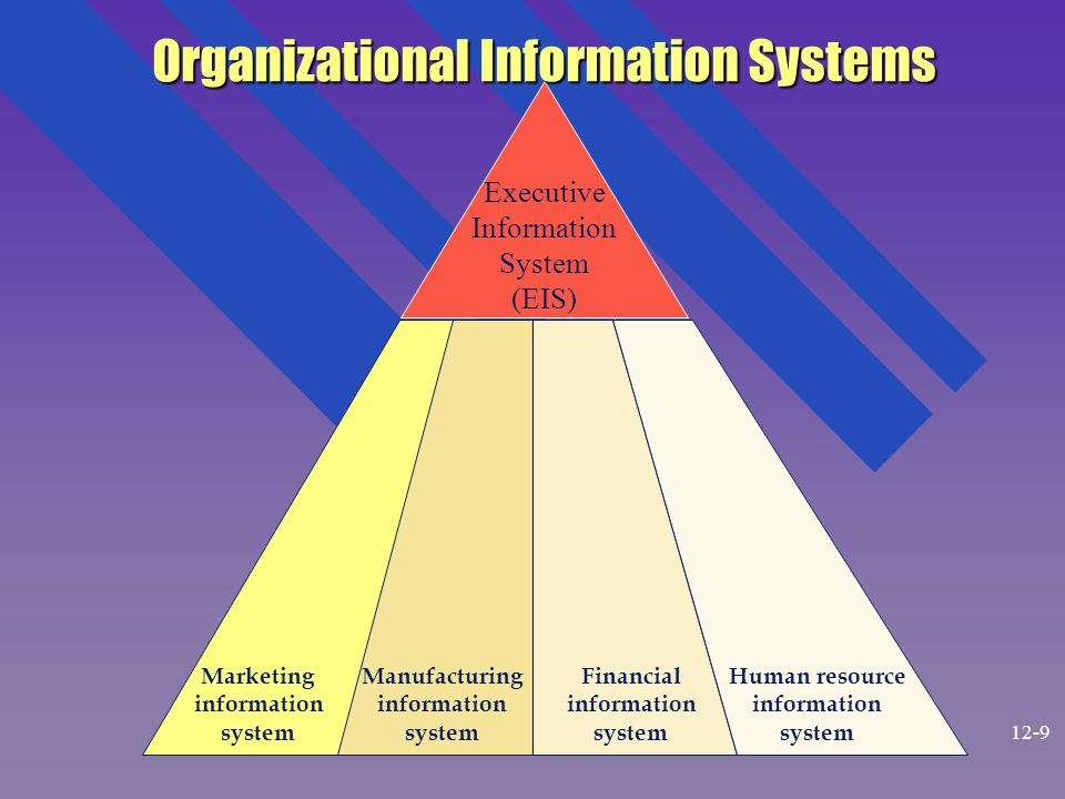 Executive Information System (EIS) Organizational Information Systems Marketing information system Manufacturing information system Financial information system Human resource information system 12-9