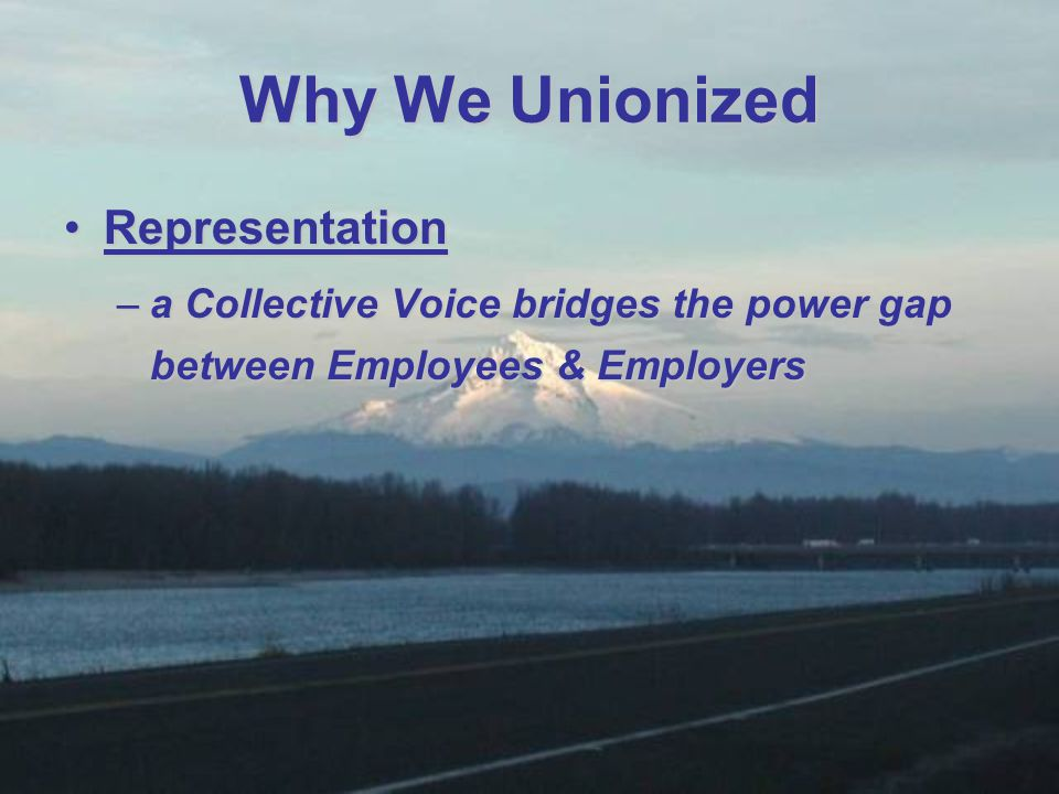 RepresentationRepresentation –a Collective Voice bridges the power gap between Employees & Employers Why We Unionized