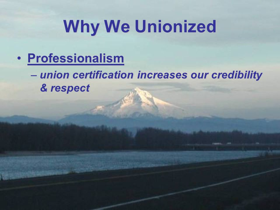 ProfessionalismProfessionalism –union certification increases our credibility & respect Why We Unionized
