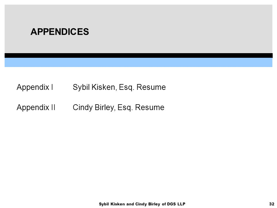 32Sybil Kisken and Cindy Birley of DGS LLP APPENDICES Appendix ISybil Kisken, Esq. Resume Appendix IICindy Birley, Esq. Resume