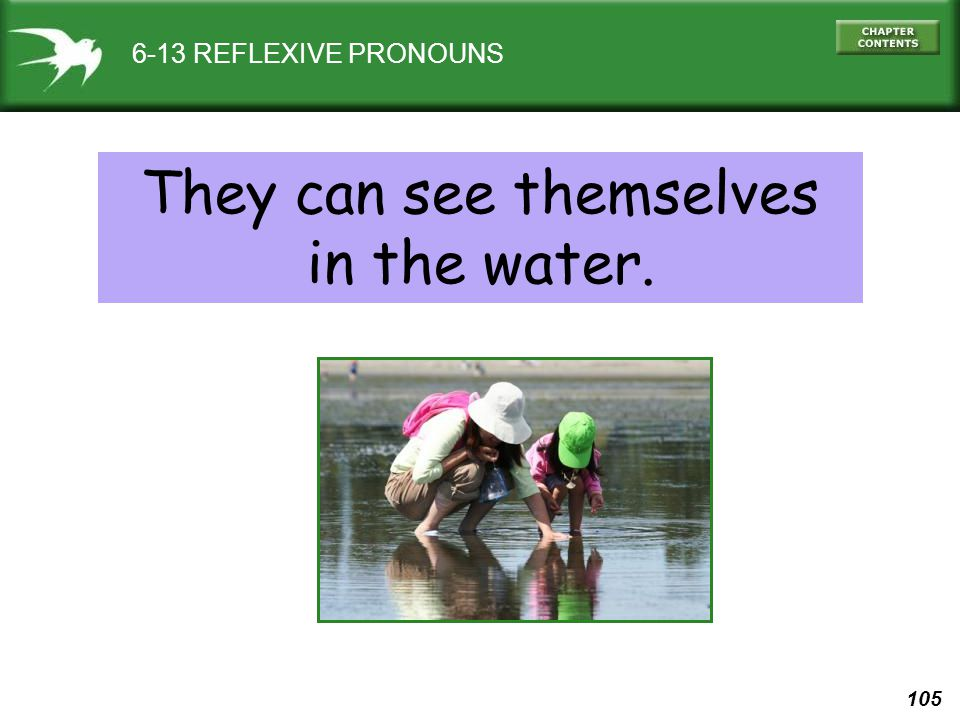 105 6-13 REFLEXIVE PRONOUNS They can see themselves in the water.