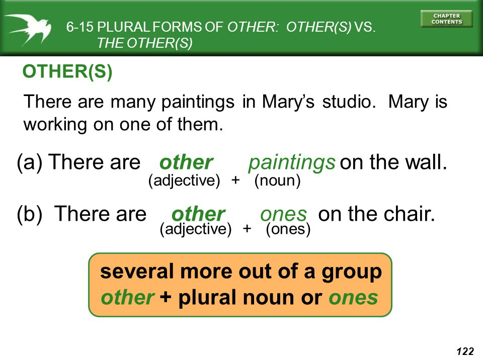 122 6-15 PLURAL FORMS OF OTHER: OTHER(S) VS.