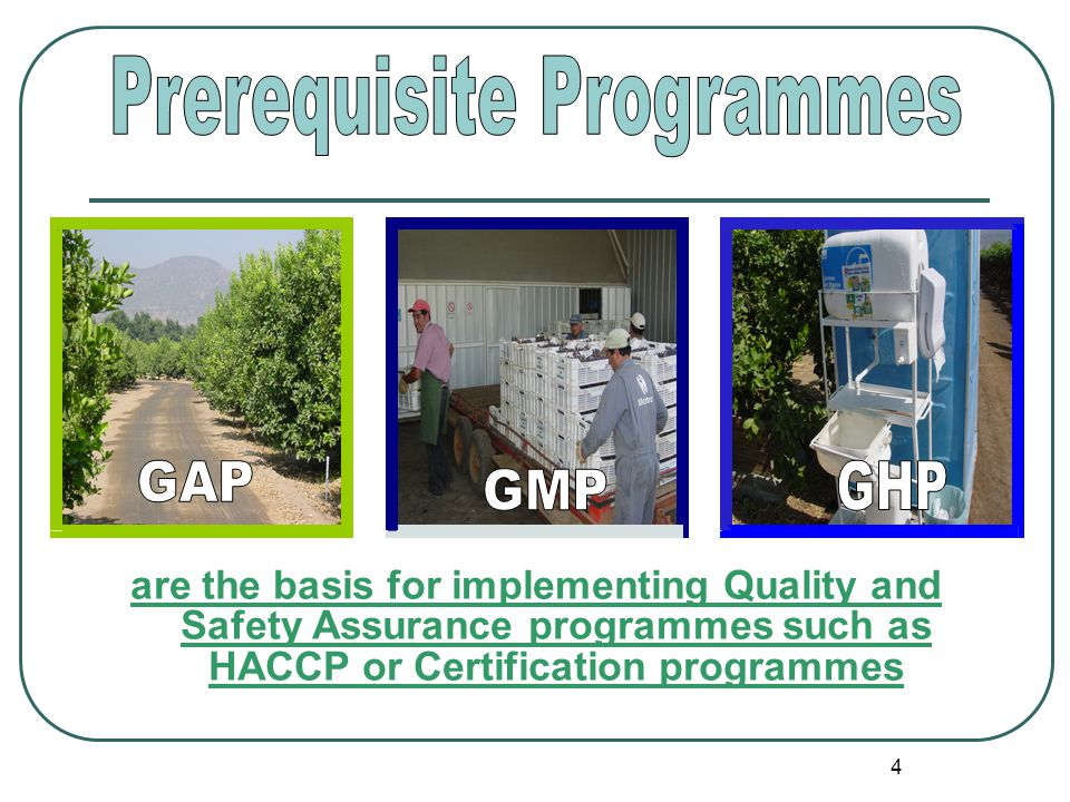 4 are the basis for implementing Quality and Safety Assurance programmes such as HACCP or Certification programmes
