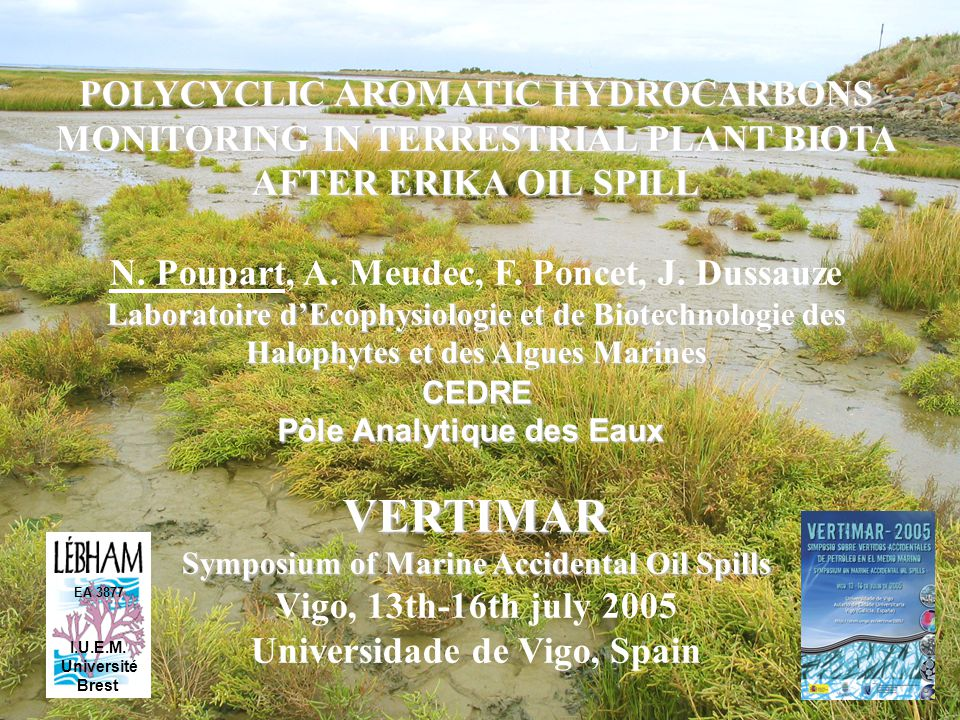 POLYCYCLIC AROMATIC HYDROCARBONS MONITORING IN TERRESTRIAL PLANT BIOTA AFTER ERIKA OIL SPILL N.