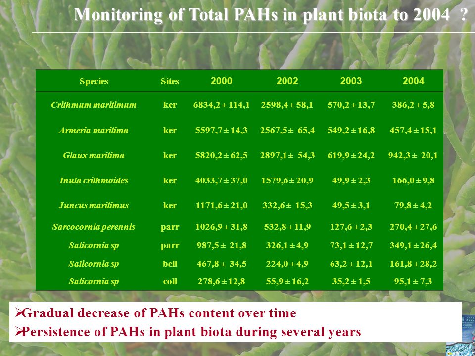 Monitoring of Total PAHs in plant biota to 2004 .