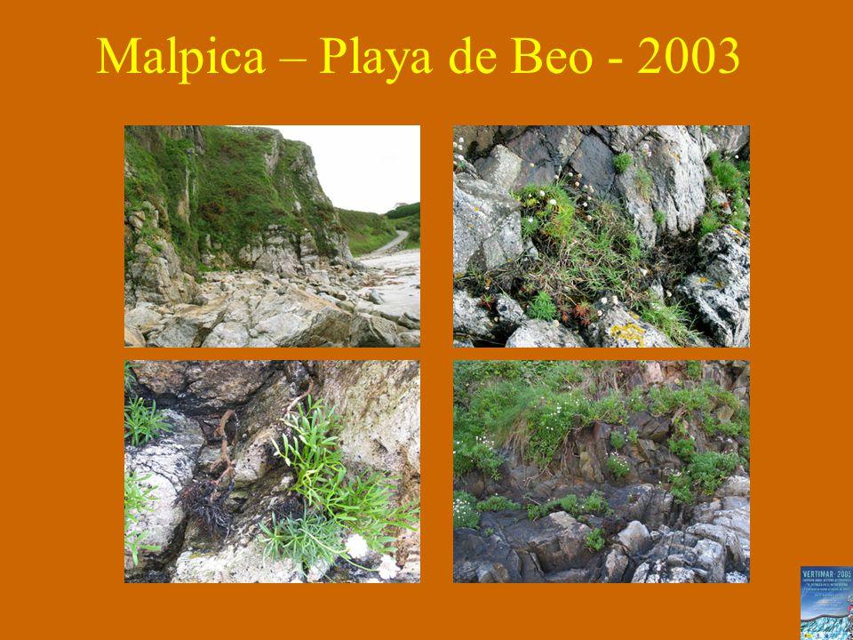 Malpica – Playa de Beo - 2003