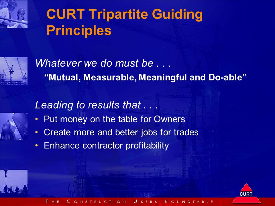CURT Tripartite Guiding Principles Whatever we do must be...