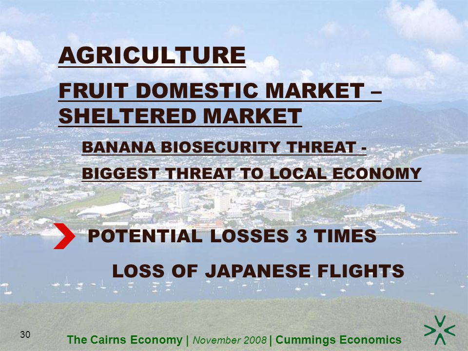 The Cairns Economy | November 2008 | Cummings Economics 30 AGRICULTURE FRUIT DOMESTIC MARKET – SHELTERED MARKET BANANA BIOSECURITY THREAT - BIGGEST THREAT TO LOCAL ECONOMY POTENTIAL LOSSES 3 TIMES LOSS OF JAPANESE FLIGHTS