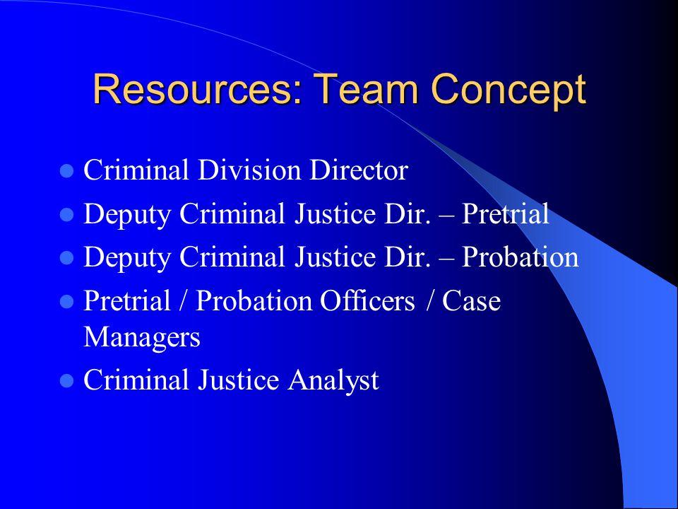 Resources: Team Concept Criminal Division Director Deputy Criminal Justice Dir.