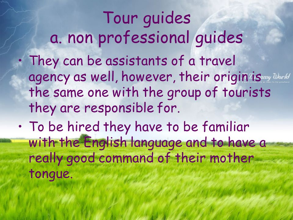 Tour guides a. non professional guides They can be assistants of a travel agency as well, however, their origin is the same one with the group of tour