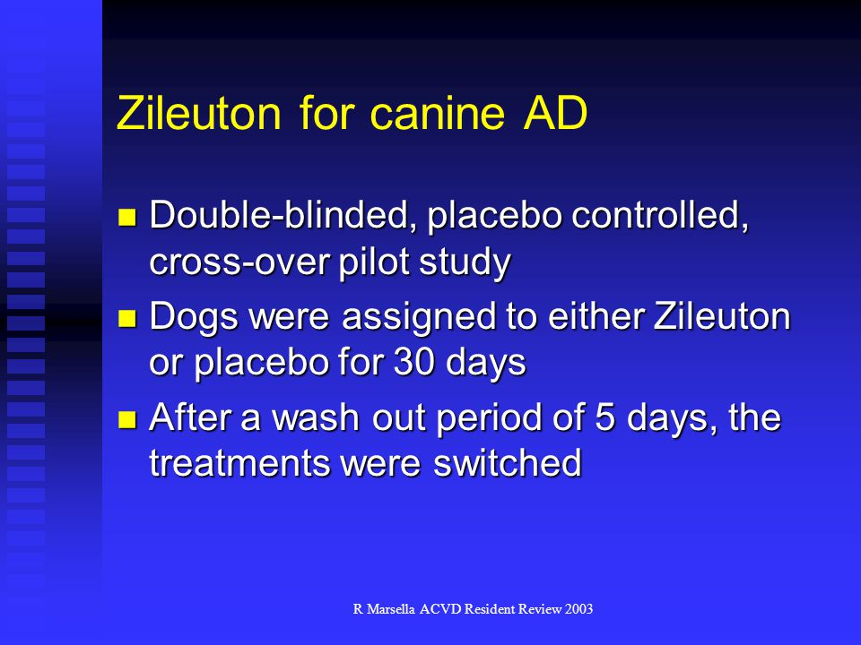 R Marsella ACVD Resident Review 2003 Zileuton for canine AD Double-blinded, placebo controlled, cross-over pilot study Double-blinded, placebo controlled, cross-over pilot study Dogs were assigned to either Zileuton or placebo for 30 days Dogs were assigned to either Zileuton or placebo for 30 days After a wash out period of 5 days, the treatments were switched After a wash out period of 5 days, the treatments were switched
