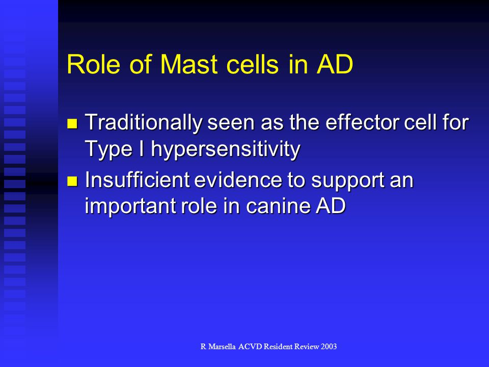 R Marsella ACVD Resident Review 2003 Role of Mast cells in AD Traditionally seen as the effector cell for Type I hypersensitivity Traditionally seen as the effector cell for Type I hypersensitivity Insufficient evidence to support an important role in canine AD Insufficient evidence to support an important role in canine AD