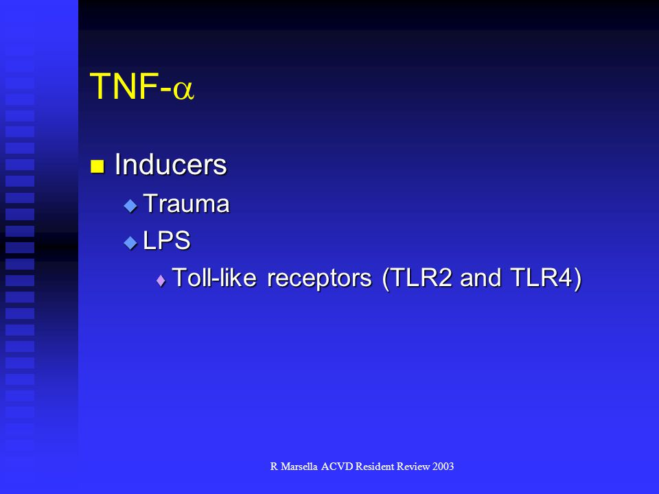 R Marsella ACVD Resident Review 2003 Inducers Inducers  Trauma  LPS  Toll-like receptors (TLR2 and TLR4) TNF- 