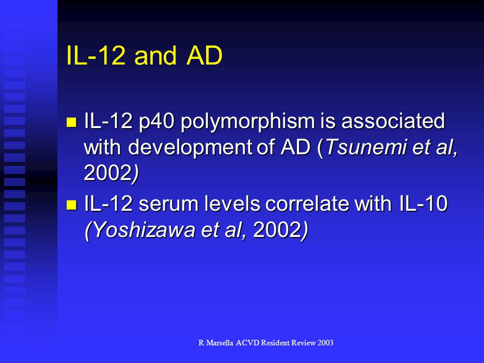R Marsella ACVD Resident Review 2003 IL-12 and AD IL-12 p40 polymorphism is associated with development of AD (Tsunemi et al, 2002) IL-12 p40 polymorphism is associated with development of AD (Tsunemi et al, 2002) IL-12 serum levels correlate with IL-10 (Yoshizawa et al, 2002) IL-12 serum levels correlate with IL-10 (Yoshizawa et al, 2002)