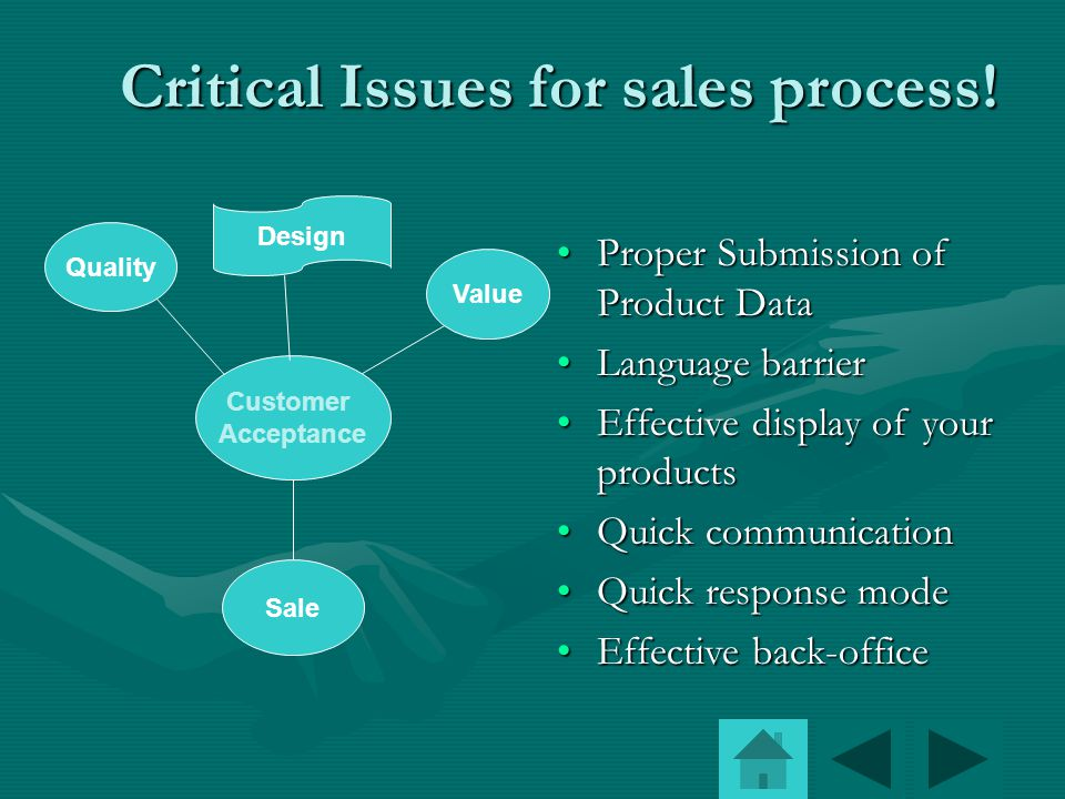 Critical Issues for sales process.