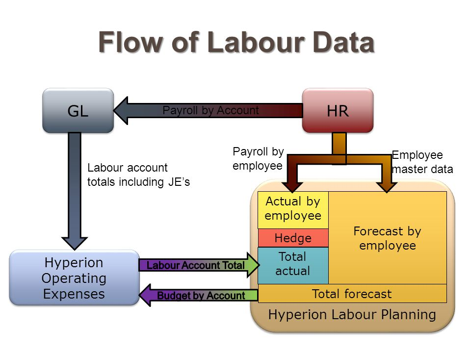 Hyperion Operating Expenses GL Hyperion Labour Planning Actual by employee Hedge Total actual Total forecast Forecast by employee HR Flow of Labour Data Payroll by Account Labour account totals including JE's Employee master data Payroll by employee