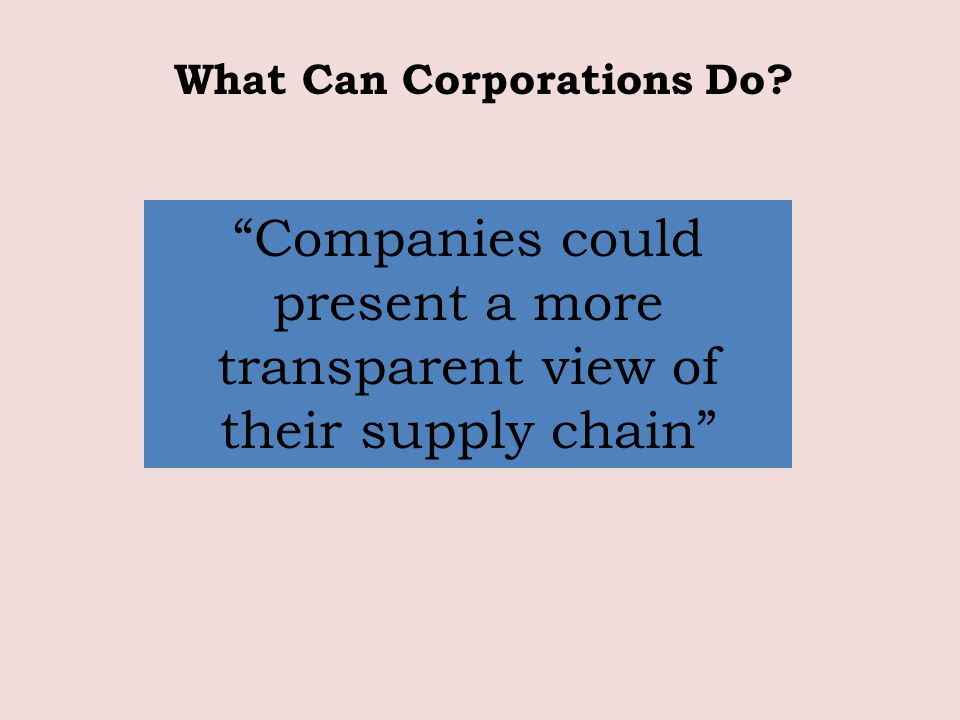 Companies could present a more transparent view of their supply chain What Can Corporations Do