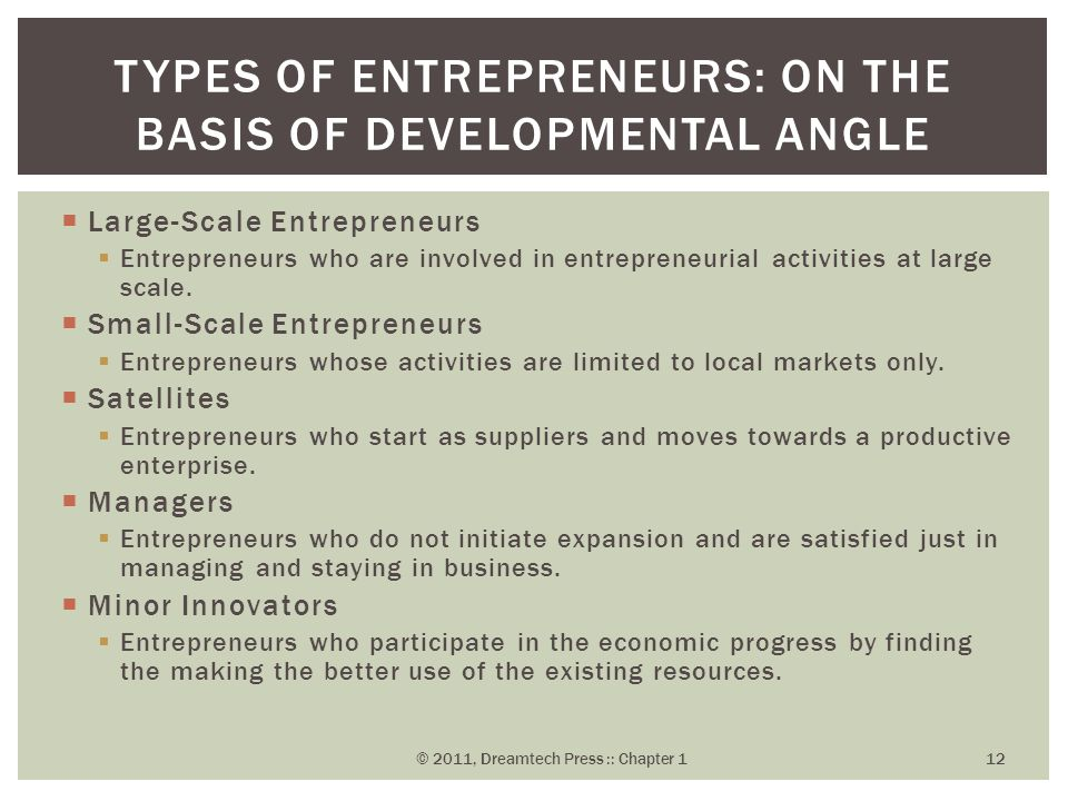  Large-Scale Entrepreneurs  Entrepreneurs who are involved in entrepreneurial activities at large scale.  Small-Scale Entrepreneurs  Entrepreneurs