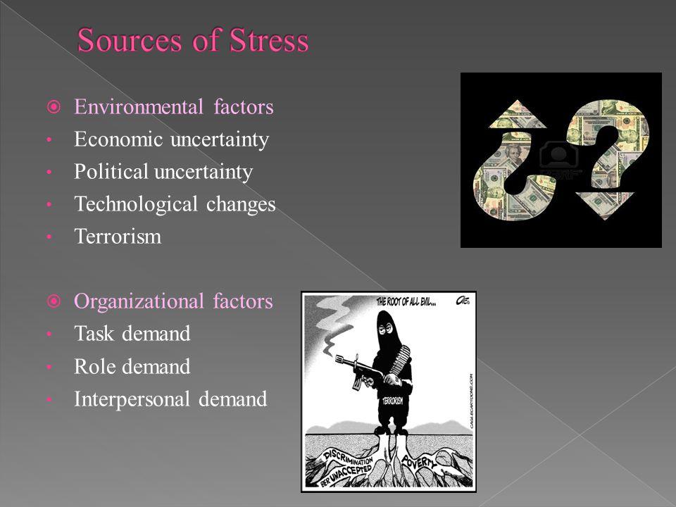  Environmental factors Economic uncertainty Political uncertainty Technological changes Terrorism  Organizational factors Task demand Role demand In