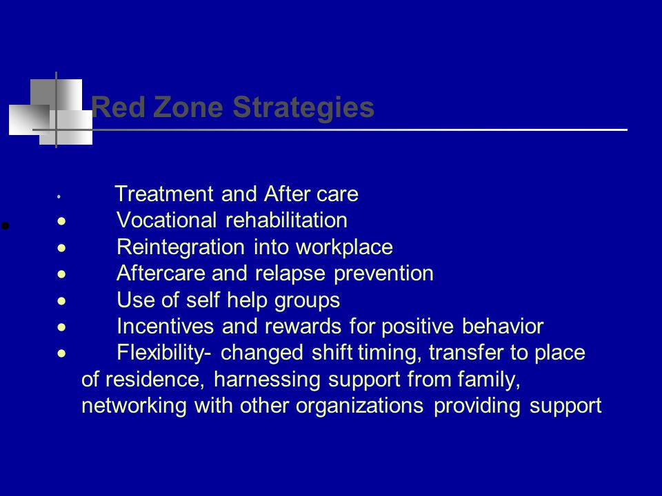 Amber zone strategies  Facilitating self change  Early identification  Training staff in communication and assistance skills  Motivating and encouraging supervisors to understand their roles  Assessing and improving their awareness of early signs of non-performance Working with the families and medical personnel to identify early social and medical problems