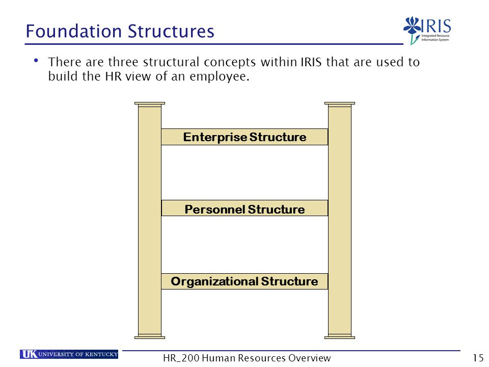 Foundation Structures Enterprise Structure Personnel Structure Organizational Structure There are three structural concepts within IRIS that are used