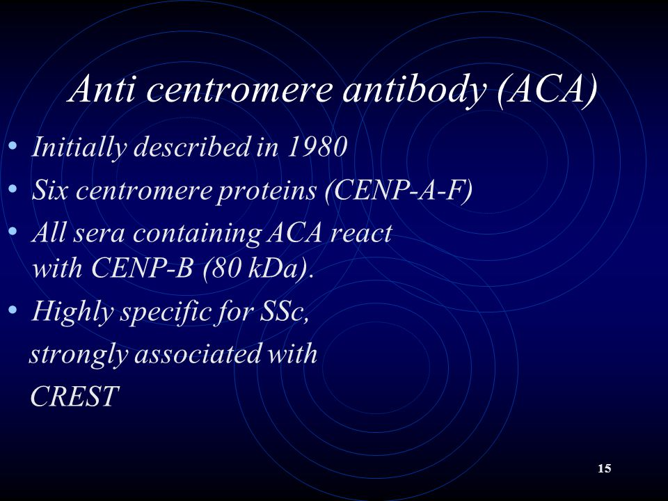 15 Anti centromere antibody (ACA) Initially described in 1980 Six centromere proteins (CENP-A-F) All sera containing ACA react with CENP-B (80 kDa).