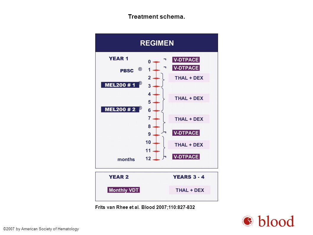Treatment schema. Frits van Rhee et al.