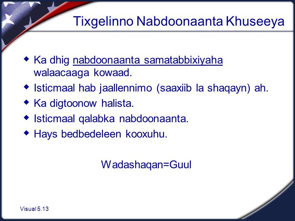 Visual 5.13 Tixgelinno Nabdoonaanta Khuseeya  Ka dhig nabdoonaanta samatabbixiyaha walaacaaga kowaad.