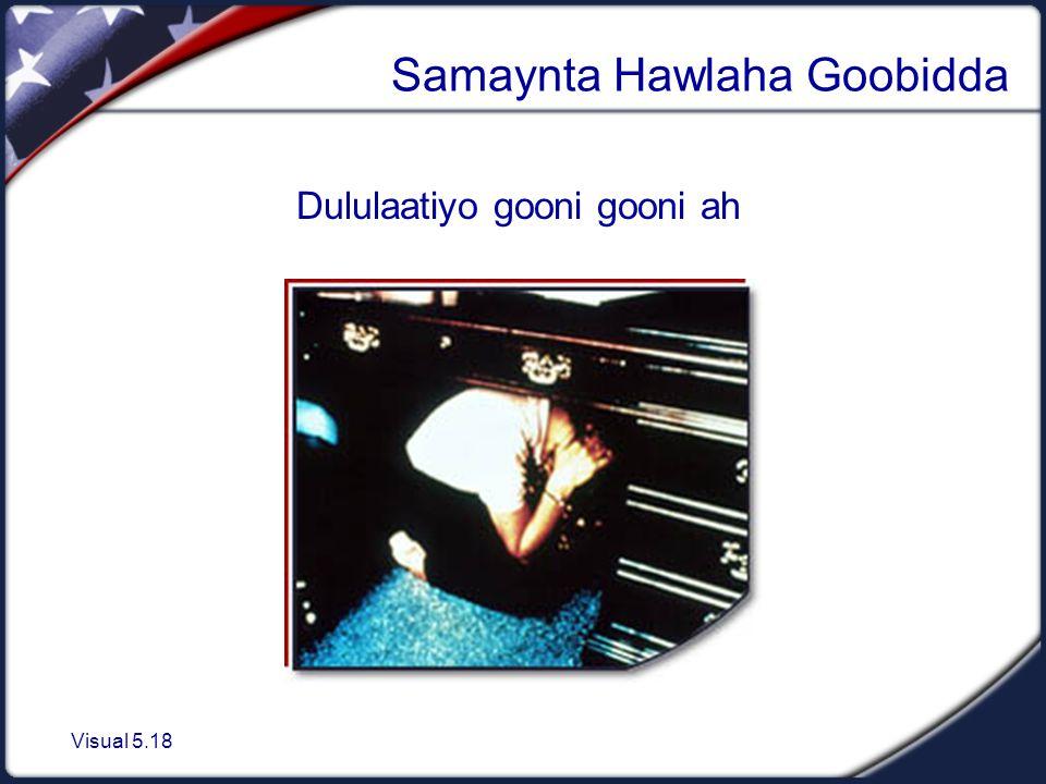 Visual 5.18 Samaynta Hawlaha Goobidda Dululaatiyo gooni gooni ah