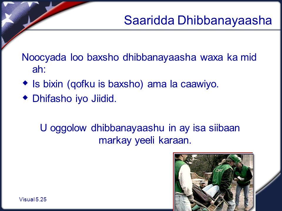 Visual 5.25 Saaridda Dhibbanayaasha Noocyada loo baxsho dhibbanayaasha waxa ka mid ah:  Is bixin (qofku is baxsho) ama la caawiyo.