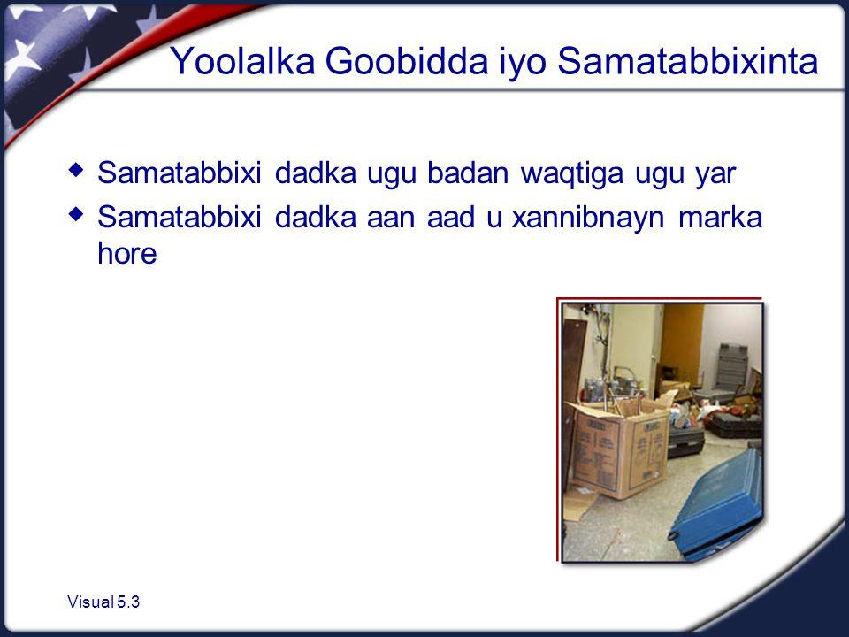 Visual 5.3 Yoolalka Goobidda iyo Samatabbixinta  Samatabbixi dadka ugu badan waqtiga ugu yar  Samatabbixi dadka aan aad u xannibnayn marka hore