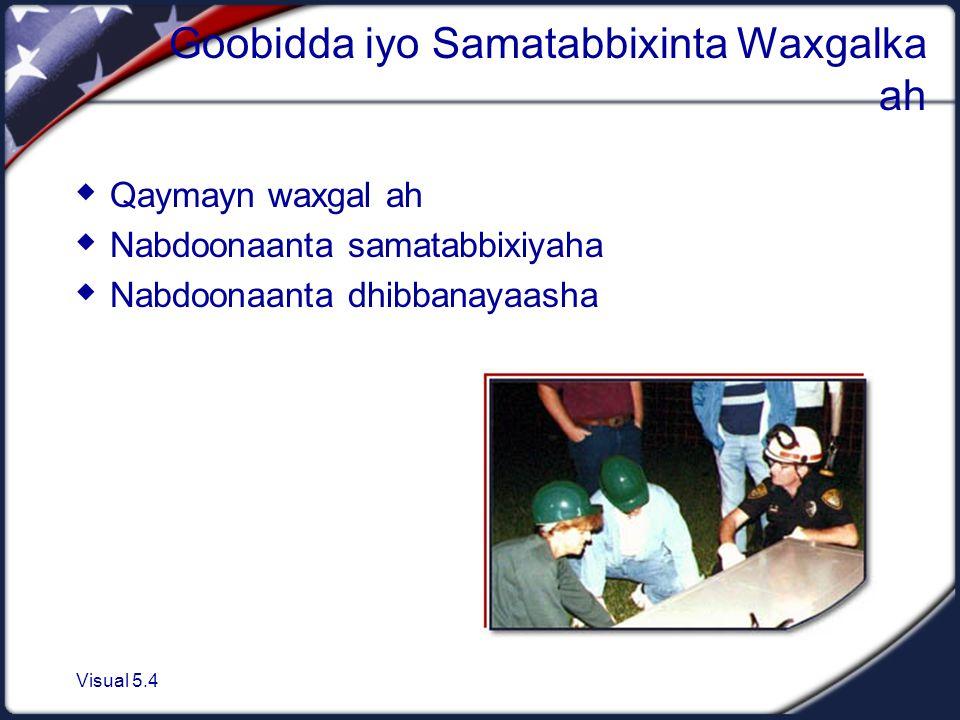 Visual 5.4 Goobidda iyo Samatabbixinta Waxgalka ah  Qaymayn waxgal ah  Nabdoonaanta samatabbixiyaha  Nabdoonaanta dhibbanayaasha
