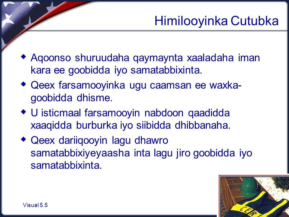 Visual 5.5 Himilooyinka Cutubka  Aqoonso shuruudaha qaymaynta xaaladaha iman kara ee goobidda iyo samatabbixinta.