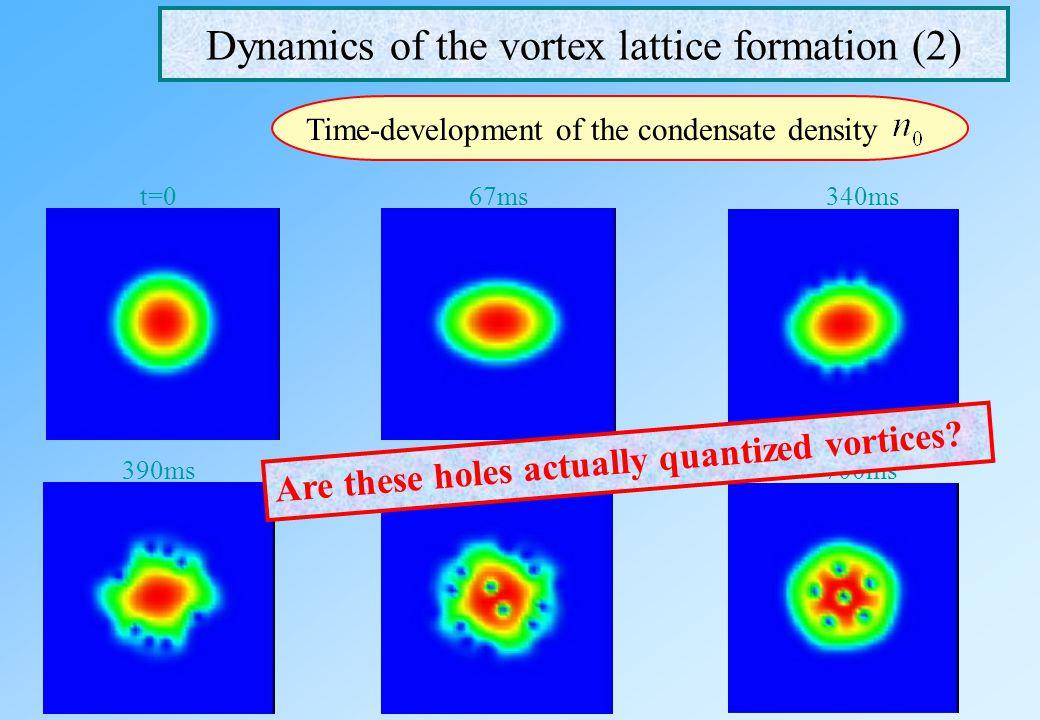 Dynamics of the vortex lattice formation (1) Time development of the condensate density Experiment Tsubota et al., Phys. Rev. A 65, 023603 (2002) Grid