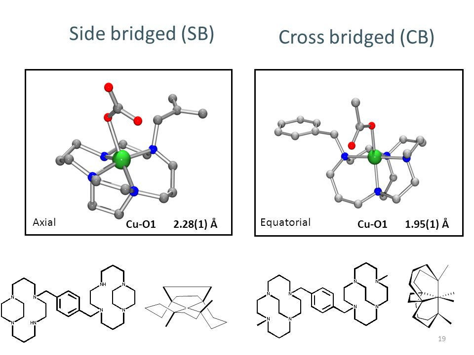 19 Cu-O12.28(1) Å Side bridged (SB) Cross bridged (CB) Cu-O11.95(1) Å AxialEquatorial