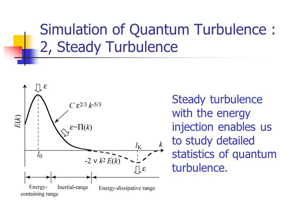 Simulation of Quantum Turbulence : 2, Steady Turbulence Steady turbulence with the energy injection enables us to study detailed statistics of quantum turbulence.
