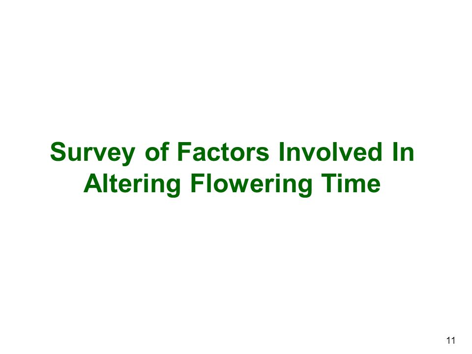 11 Survey of Factors Involved In Altering Flowering Time