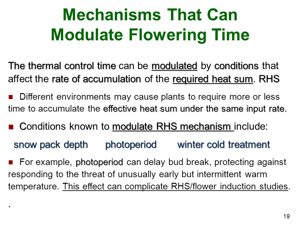 19 Mechanisms That Can Modulate Flowering Time The thermal control time modulated conditions rate of accumulation required heat sumRHS The thermal con