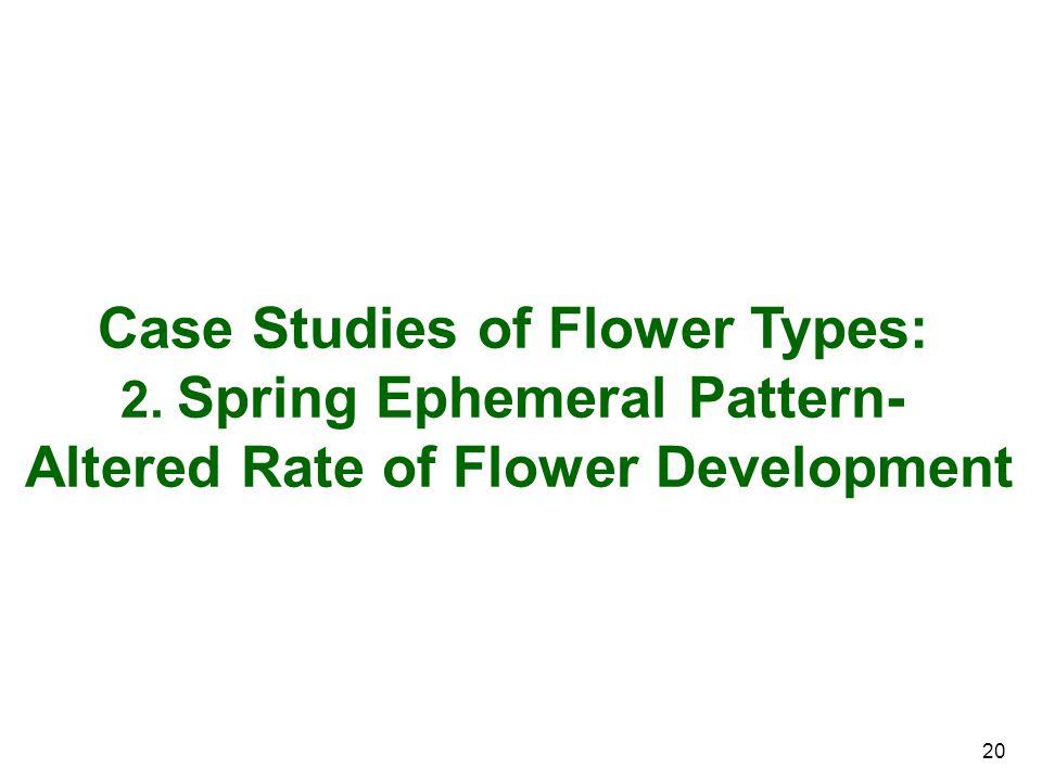 20 Case Studies of Flower Types: 2. Spring Ephemeral Pattern- Altered Rate of Flower Development