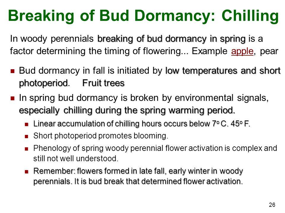 26 breaking of bud dormancy in spring In woody perennials breaking of bud dormancy in spring is a factor determining the timing of flowering...