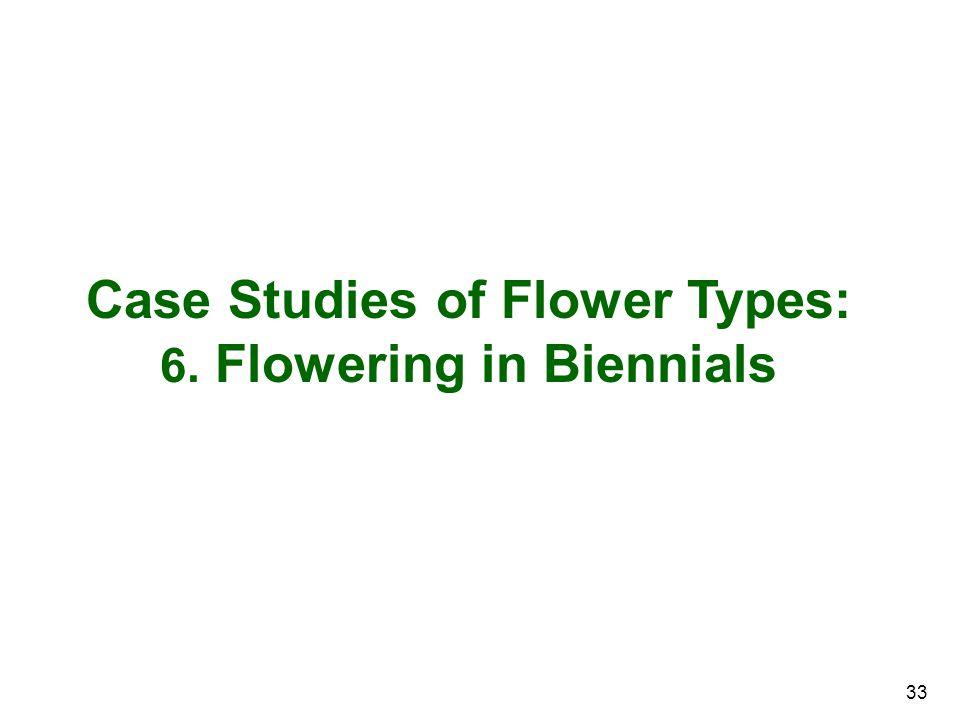 33 Case Studies of Flower Types: 6. Flowering in Biennials