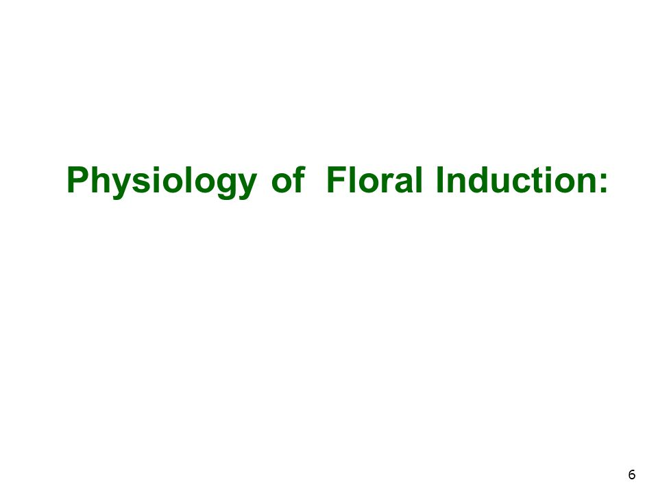 6 Physiology of Floral Induction: