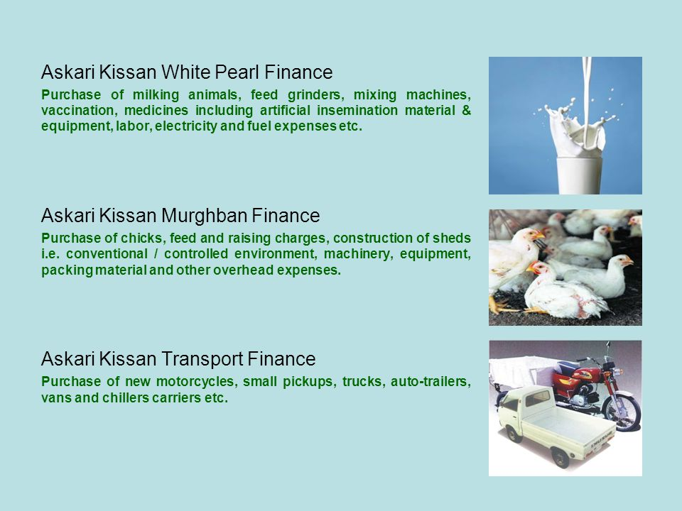 Askari Kissan White Pearl Finance Purchase of milking animals, feed grinders, mixing machines, vaccination, medicines including artificial inseminatio