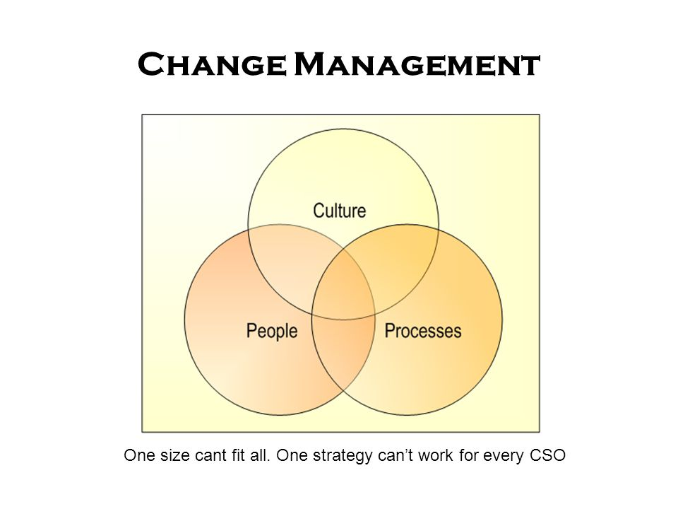 Change Management One size cant fit all. One strategy can't work for every CSO