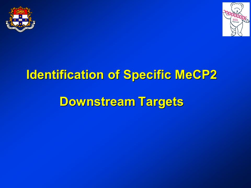 Identification of Specific MeCP2 Downstream Targets