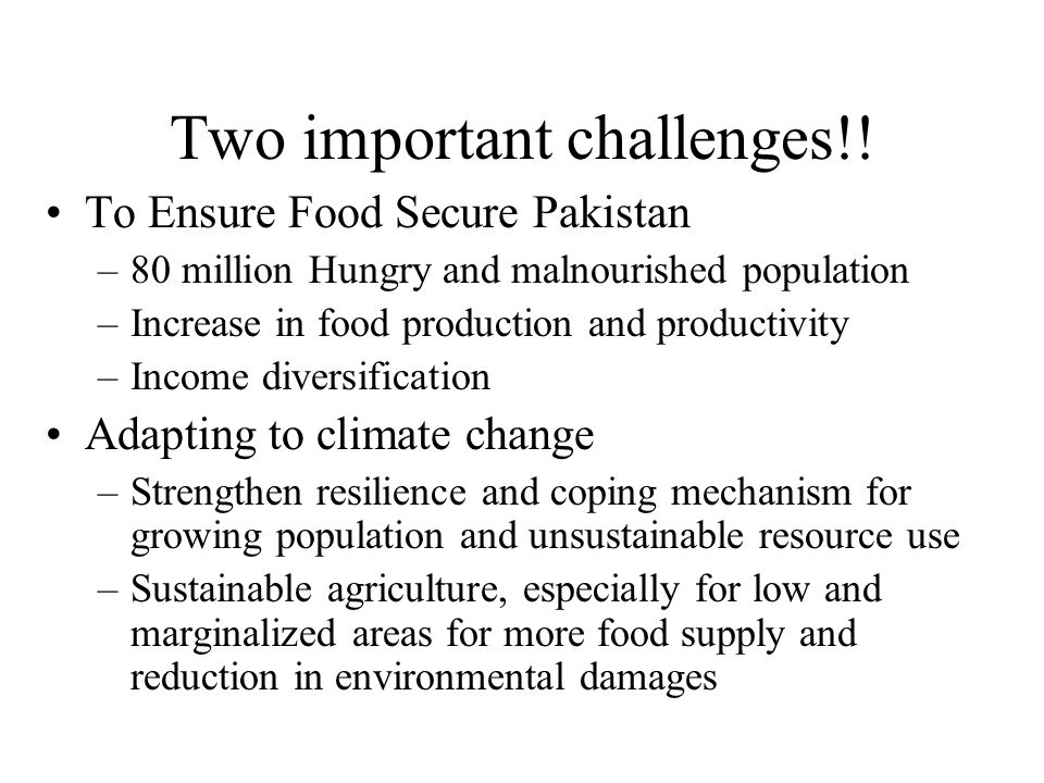 Hunger in Pakistan  Malnourished in Pakistan increased to 35 Million during 2010-12 from 30 Million during 1990-92 (FAO, 2011-12).