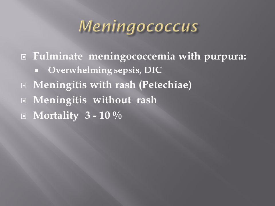  Fulminate meningococcemia with purpura:  Overwhelming sepsis, DIC  Meningitis with rash (Petechiae)  Meningitis without rash  Mortality 3 - 10 %