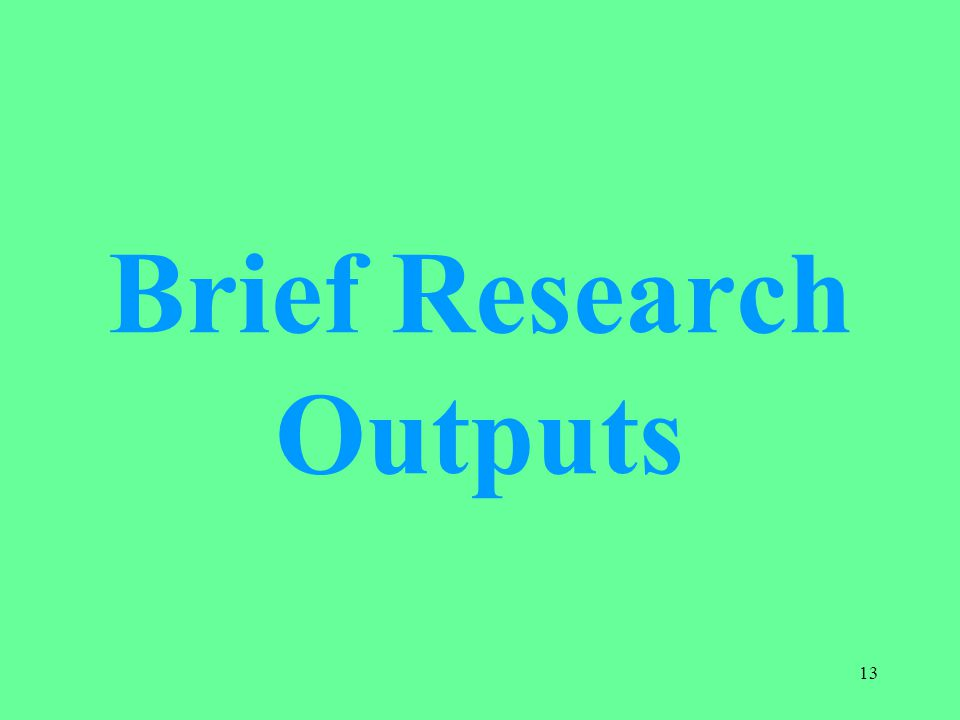 Brief Research Outputs 13